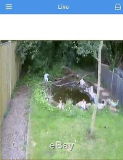Enregistreur Vidéo Numérique 4 Canaux Swann Dvr4-4400 Avec 2 Caméras Bnc 1080p Cctv